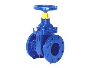 AVK series 555 gate valve