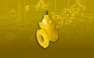 Gas valves and sections
